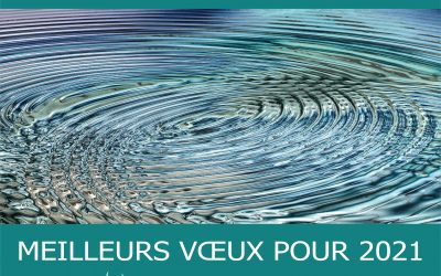 MEILLEURS VŒUX POUR 2021!